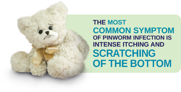 The most common symptom of pinworm infection is intense itching and cratching of the bottom